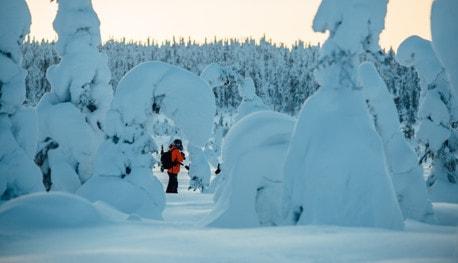 北欧専門旅行会社・フィンツアーフィンランド教育都市           オウル北欧専門旅行会社・フィンツアー