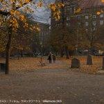 last_deal_old_church_park2