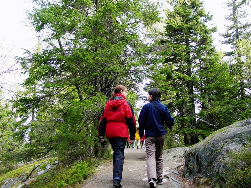 ハイキングを楽しみましょう