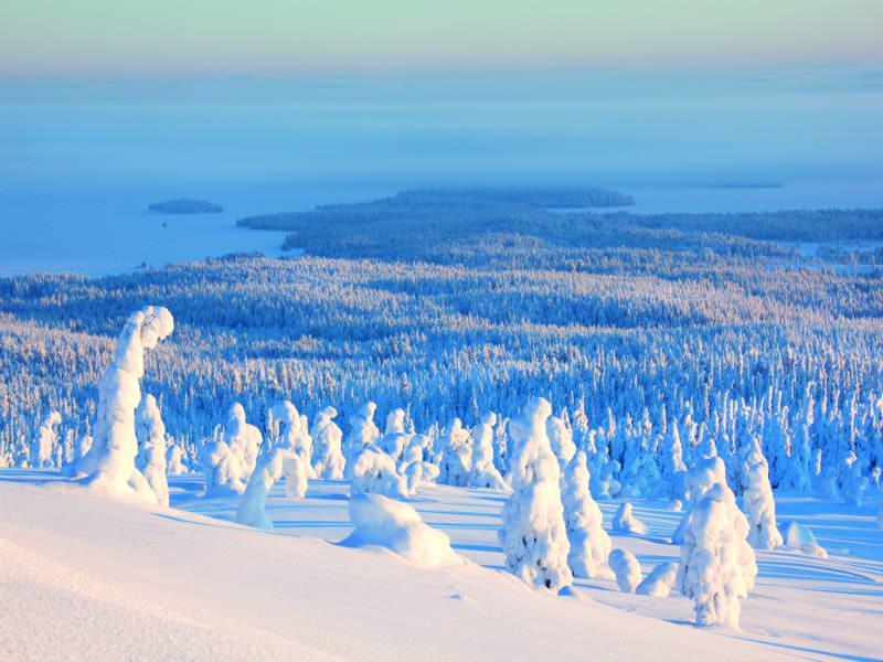 Visit Finland1