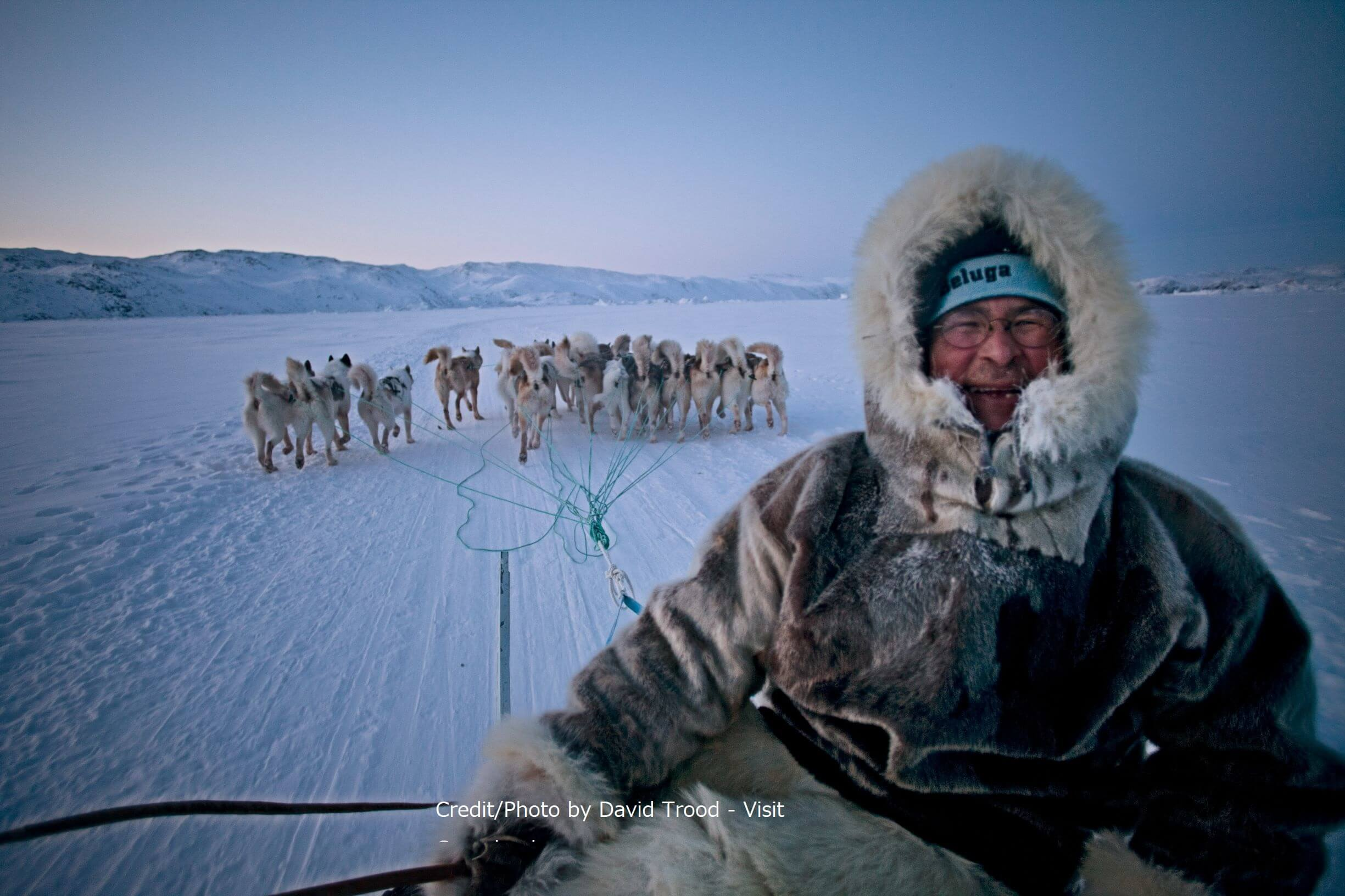 A portrait of a happy dog sled driver enjoying the winter cold on the trail near Ilulissat in Greenland's Disko Bay