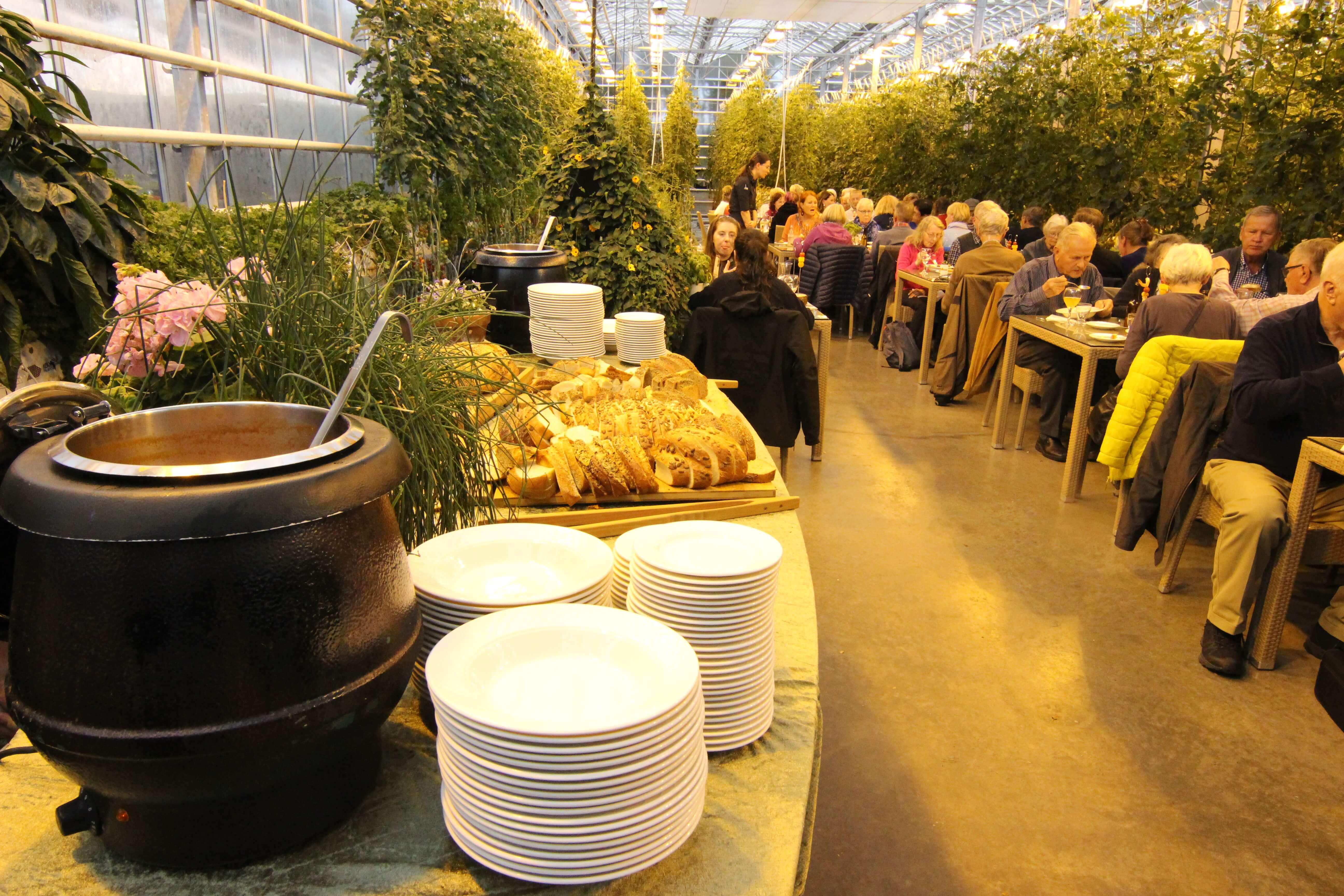 フリィズヘイマルトマト農園